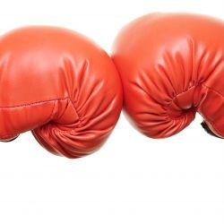 In the Ring — Scrivener vs. Word