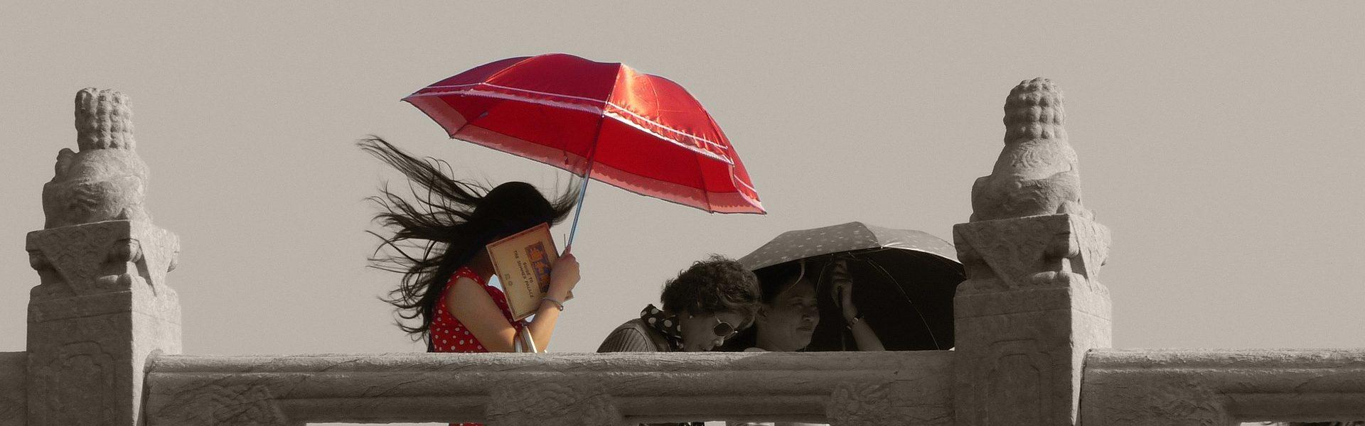 umbrella-952627_1920